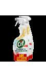 CIF SPRAY CUISINE SALLE BAIN 750ML LOT2
