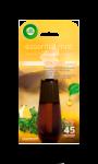 Recharge Essential Mist Thym, Citron & Romarin Air Wick