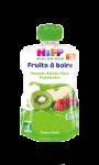 Gourde Pommes Raisins Kiwis Framboises HIPP Biologique