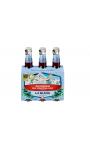 Bière La Bleue Brasserie du Mont Blanc