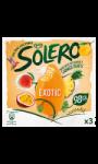 Exotic Ice Cream Langnese Solero